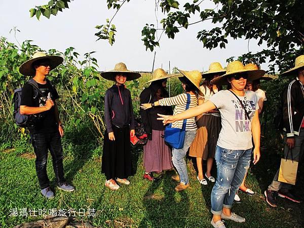 屏東_九如_大花農場_玫瑰花農場_11