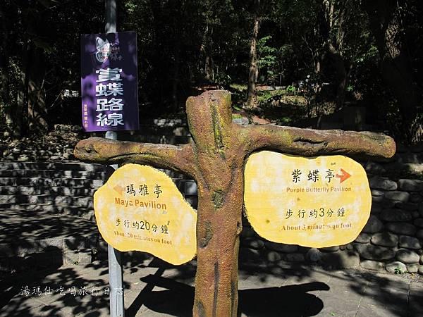 高雄旅遊,茂林生態旅遊,紫蝶幽谷,雙年賞蝶_17