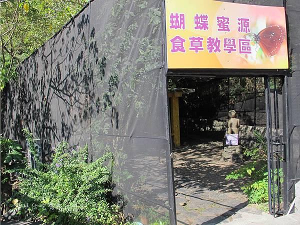高雄旅遊,茂林生態旅遊,紫蝶幽谷,雙年賞蝶_16