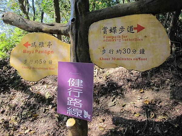 高雄旅遊,茂林生態旅遊,紫蝶幽谷,雙年賞蝶_20