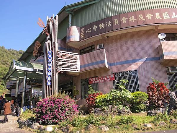 高雄旅遊,茂林生態旅遊,紫蝶幽谷,雙年賞蝶_05