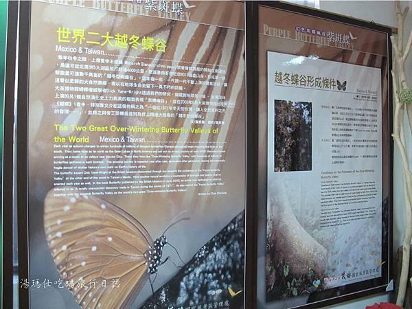 高雄旅遊,茂林生態旅遊,紫蝶幽谷,雙年賞蝶_10