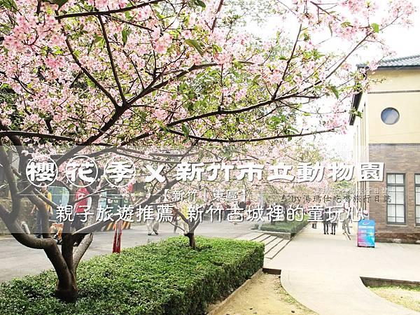 新竹市立動物園,新竹賞櫻,麗池文化祭,春節親子景點_01