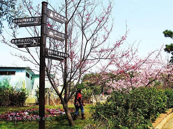 新竹市立動物園,新竹賞櫻,麗池文化祭,春節親子景點_09