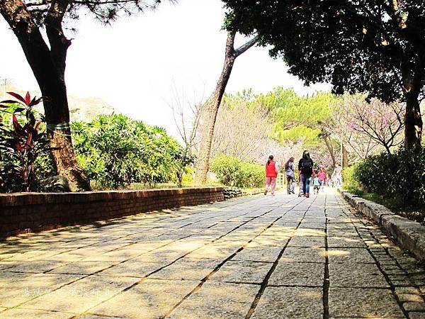 新竹市立動物園,新竹賞櫻,麗池文化祭,春節親子景點_12