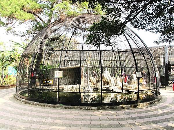 新竹市立動物園,新竹賞櫻,麗池文化祭,春節親子景點_18