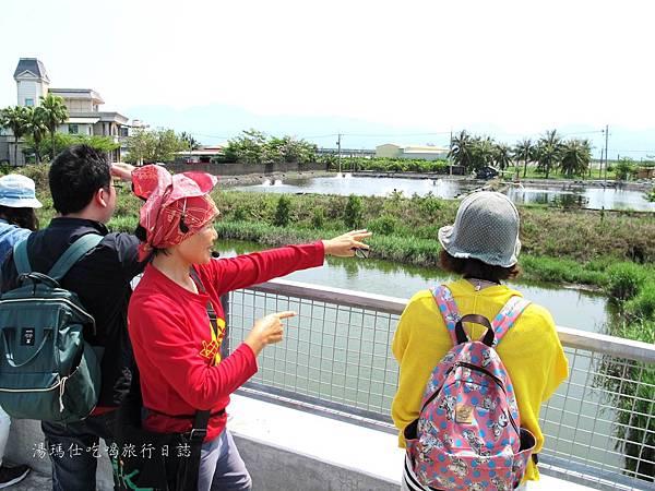 屏東景點,屏東生態旅遊,屏東親子景點,光采濕地_22