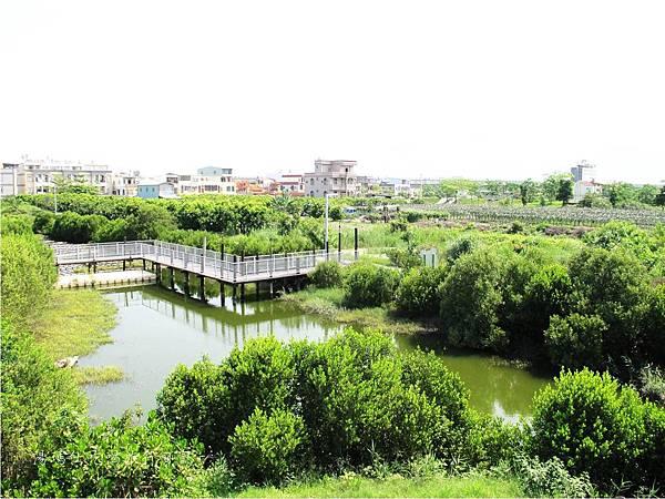 屏東景點,屏東生態旅遊,屏東親子景點,光采濕地_06