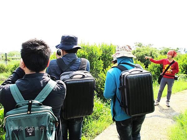 屏東景點,屏東生態旅遊,屏東親子景點,光采濕地_05