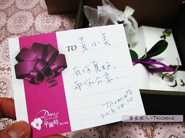 台灣蘭花,蘭花伴手禮,台南蘭花,朵麗絲DORIS_09