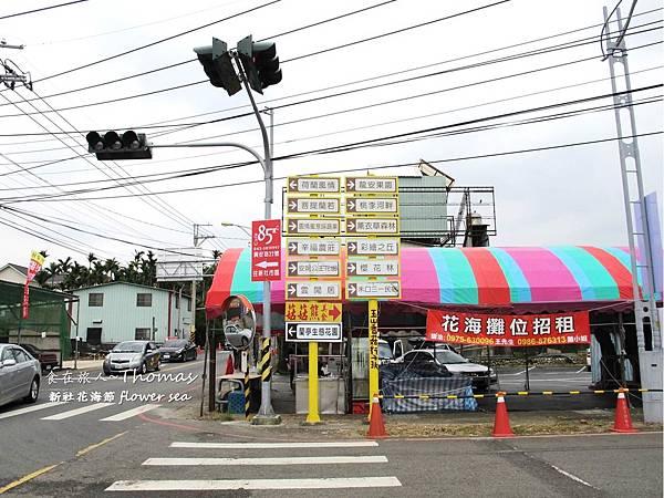 台中景點,2016新社花海節_19