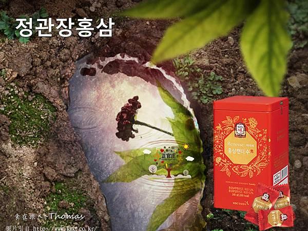 2019韓國必買,2019韓國購物指南,首爾自行行必買_10