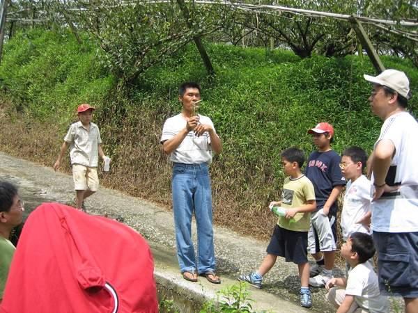 蜻蜓谷果園2.JPG