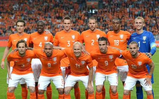 2014世界杯荷蘭對智利-0-2