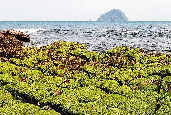2012 基隆和平島_029.JPG