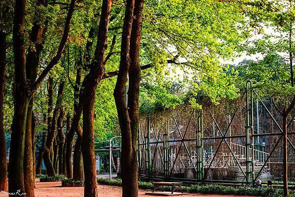 2013 青年公園_007.JPG
