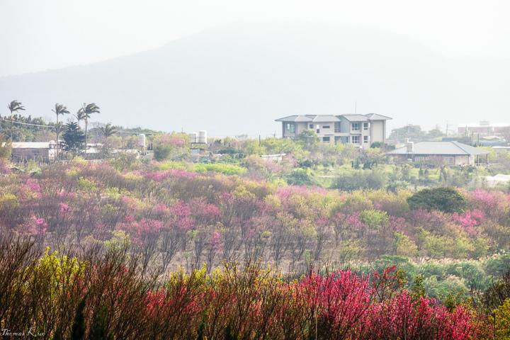 2013-2 平等里_001.JPG