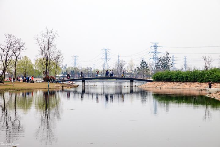 2013-3 上海辰山_021.JPG