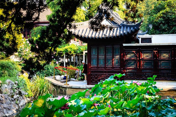 2013-8 桂林公園_014.JPG
