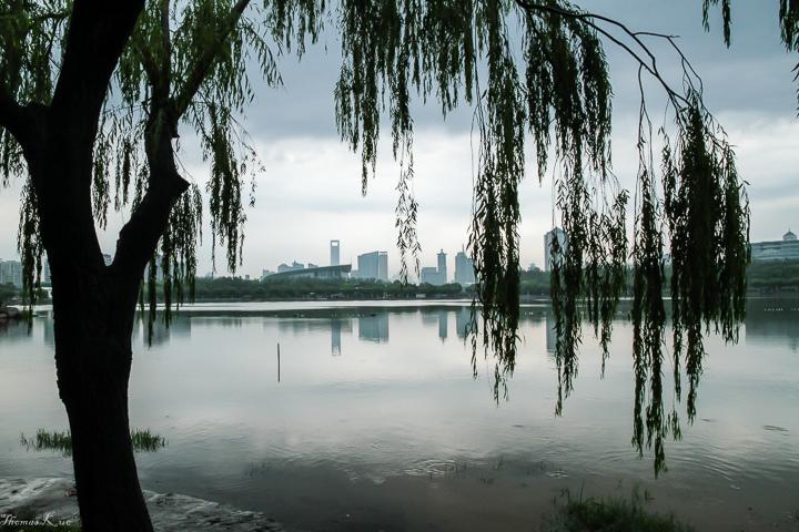 2011 上海_044.JPG
