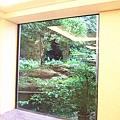 大廳窗景.jpg