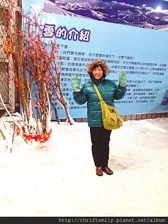 人造雪.jpg