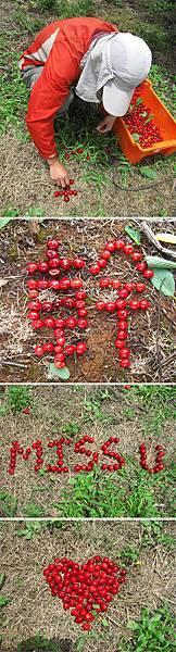 Cherry排字.jpg
