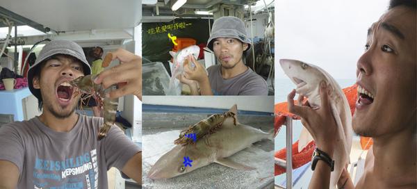 惡搞鯊魚.jpg