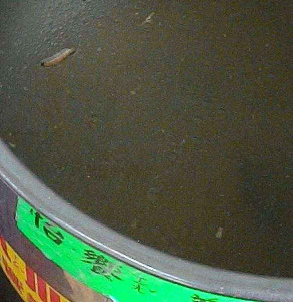 1050919(怡饗)海結玉米湯有菜蟲2.jpg