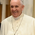國際愛心人士教宗