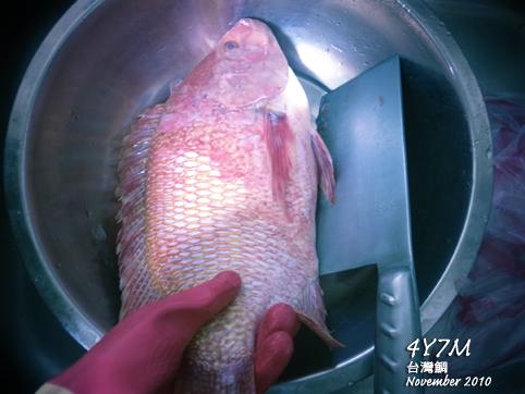 第一次殺魚