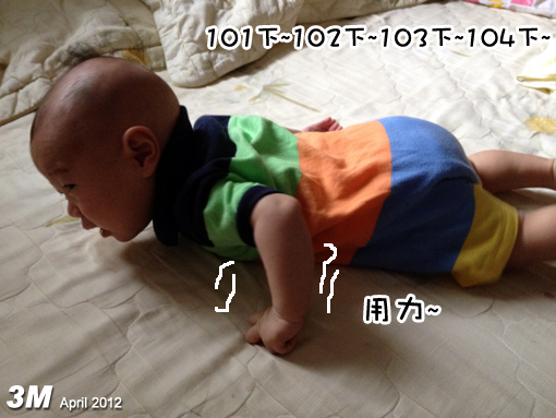 IMG_1078-.jpg