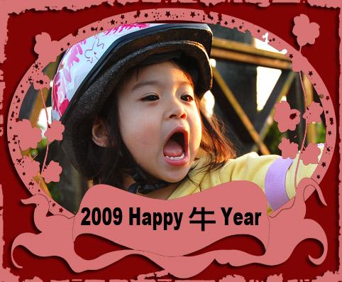 Hapy 牛 year