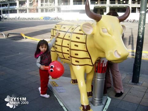 算命彩繪牛