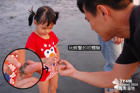 最後不怕了開始玩螃蟹了