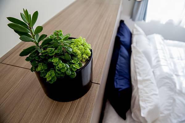 05.圖五:多肉植物與黑色極簡瓷盆組合呈現LOFT風的自然意趣