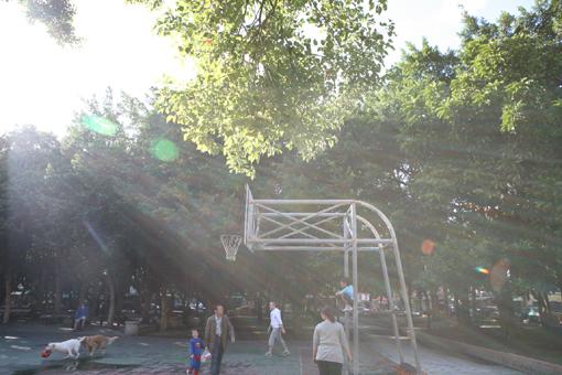 蘭雅公園IMG_5669-1.jpg