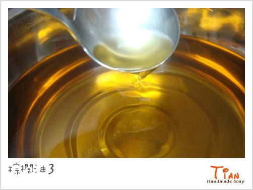 棕櫚油3.jpg