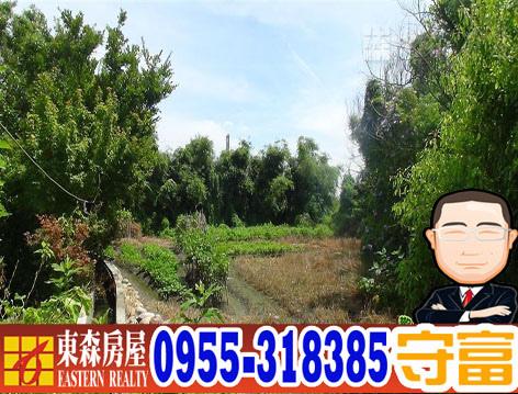 60477MAA09385a.jpg