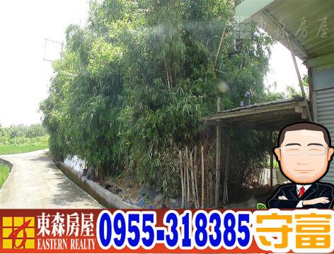 60477MAA09385b.jpg