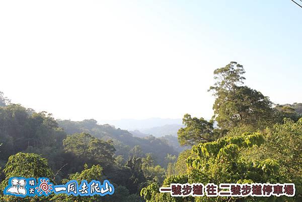 20131201-632.jpg