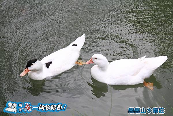 戀戀山水農莊民宿20131228-123.jpg