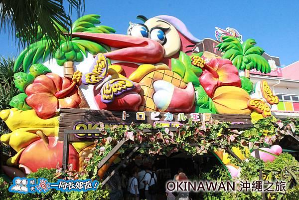 日本沖繩之旅-水