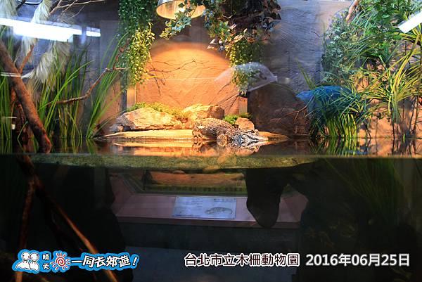 20160625_0294-76.jpg
