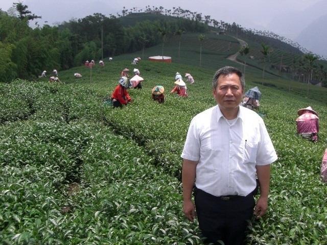 阿里山茶葉男