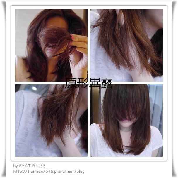 mr. hair ORIGINAL 01_副本.jpg