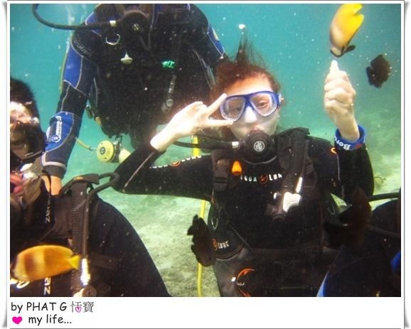 diving 03.JPG