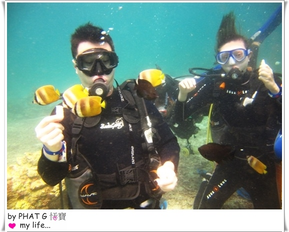 diving 04.JPG