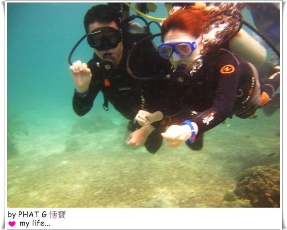 diving 05.JPG