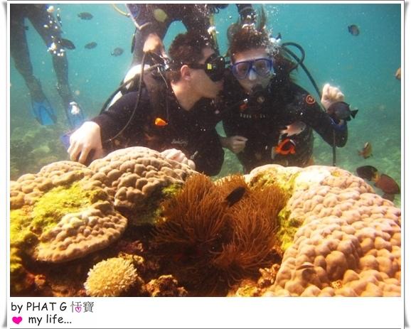 diving 08.JPG